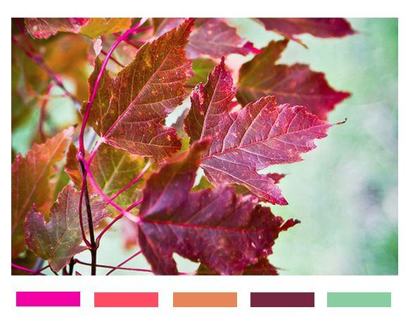 autumn color trend