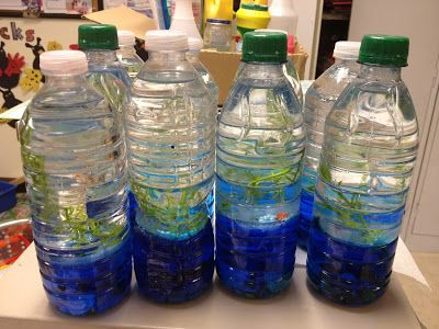 Wave Bottles Water Baby Oil Food Coloring Plastic Fish