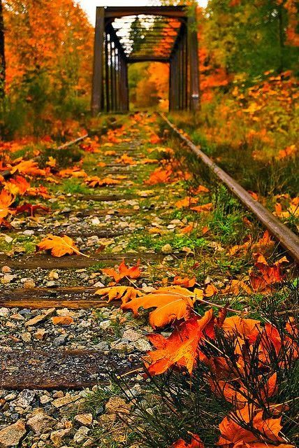 Stunninghubs: Best Autumn Pictures