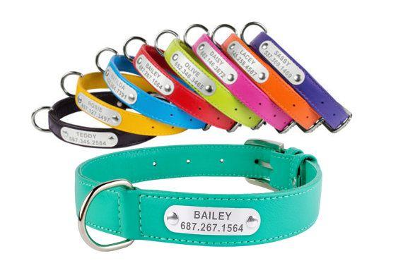 Hundehalsband Leder personalisierten Namensschild von CollarDirect