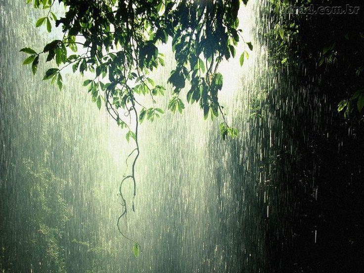 vidraça chuva - Pesquisa Google