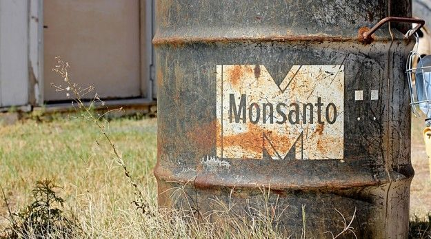 """Monsanto Flirts With Disaster, Owns The World Anyway."" http://www.honeycolony.com/article/monsanto-flirts-with-disaster-owns-the-world-anyway/"