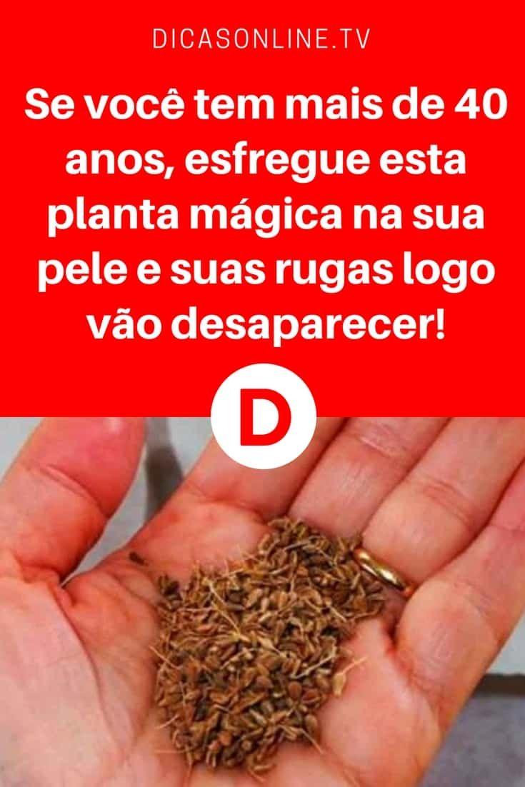 Pele madura cuidados | Se você tem mais de 40 anos, esfregue esta planta mágica na sua pele e suas rugas logo vão desaparecer! | É uma planta muito fácil de ser encontrada. Mas tem que fazer da forma certa... Aprenda ↓ ↓ ↓