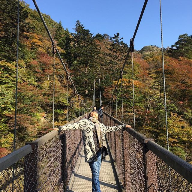 【energyflow_yoko】さんのInstagramをピンしています。 《#autnmn#autnmnleaves#秋#紅葉#光#light#travel#tochigi#japan#2016autnmn#那須塩原#nasushiobara#river#森林#山#栃木#mauntain#leaves#nature#吊り橋#回顧の滝#回顧の吊橋#brige#yokomaeda》