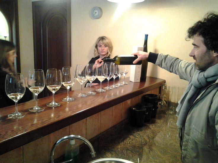 Azienda Elio Perrone di Castiglione Tinella: Stefano ci fa assaggiare il GI, Moscato+Chardonnay di fronte ad un'attonita @framusso