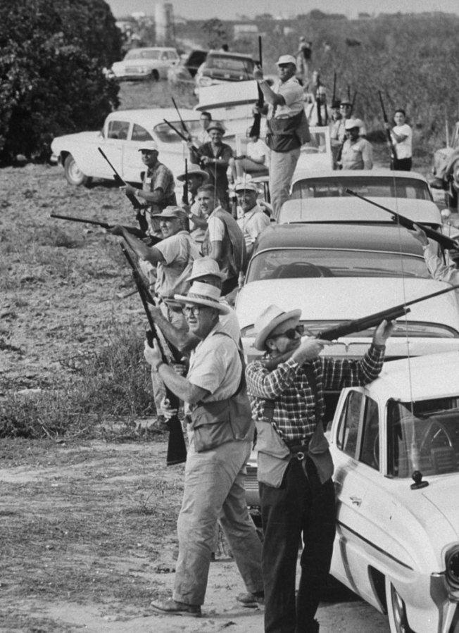 Ralph Crane: dove hunting