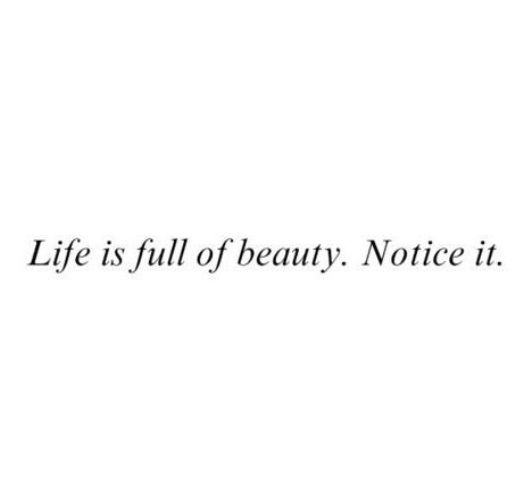 Life is full of beauty. Notice it. #quote #quoteoftheday #inspiration