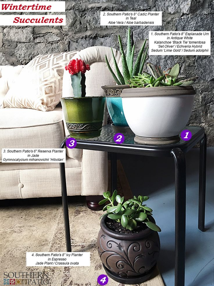 Ceramic Planters And Succulents Make For Great Indoor Gardening When The  Weather Is Cold. Check