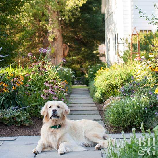 3843 Best Landscaping Ideas Images On Pinterest