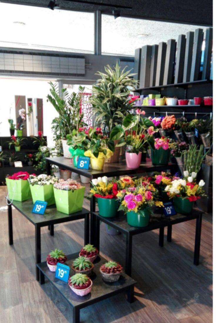 Fiorito Abbiategrasso: un meraviglioso negozio di fiori! #Fiorito #Abbiategrasso
