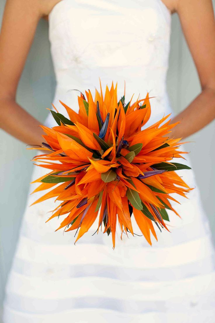 Unique wedding bouquet from my wedding. My wife's favorite flower didn't lend to an easy bouquet, but the Bird of Paradise was stunning at our beach wedding.