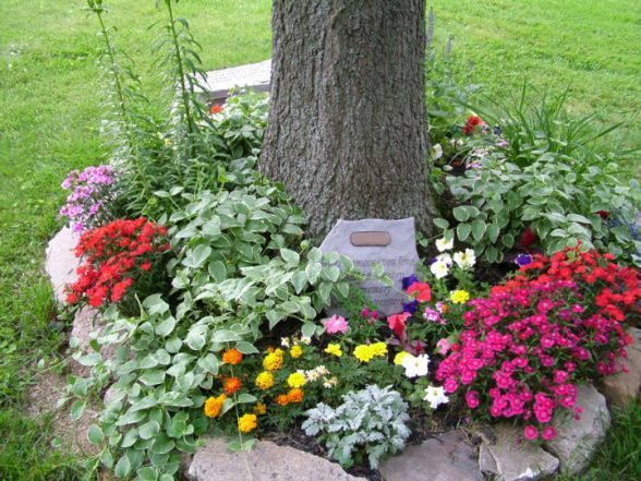 Flower Garden Ideas Around Tree 71 best landscaping images on pinterest | mailbox landscaping