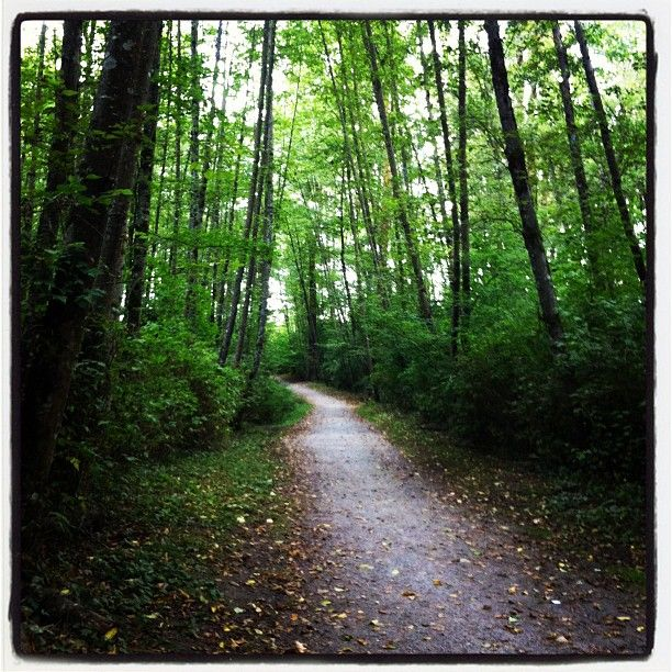 Surrey is known as the city of parks. Bear Creek Park is one of the largest. Go for a walk, a hike and enjoy the nature!