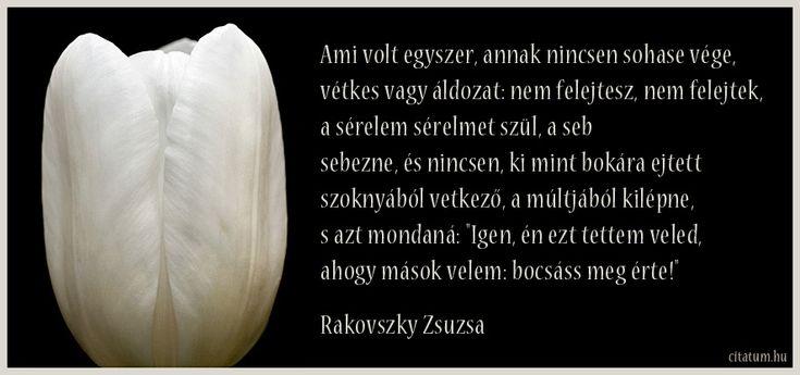 Rakovszky Zsuzsa idézet a megbocsátásról.