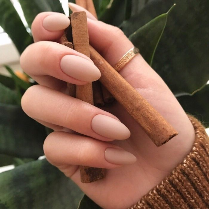 thumb gold ring, on a hand, holding several cinnamon sticks, oval nails with mat…