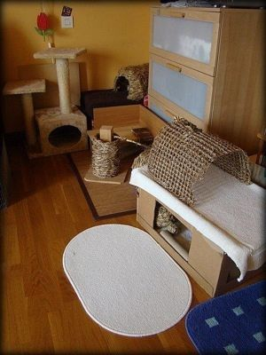 8 best Bunny Housing Ideas images on Pinterest   Bunny cages, Pet ...