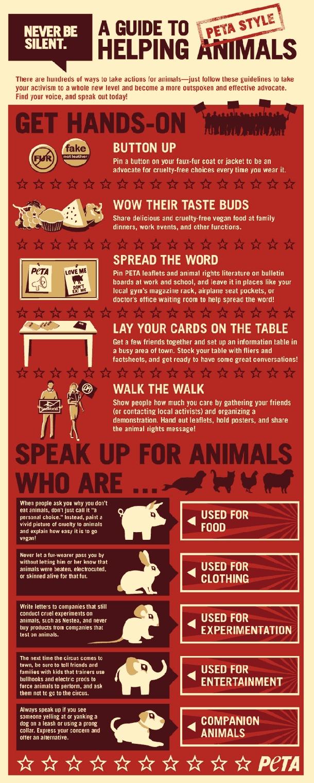 #infographics #infographic #animals #bobi #bobiaustralia #bobiaustralia http://www.facebook.com/BobiAustralia