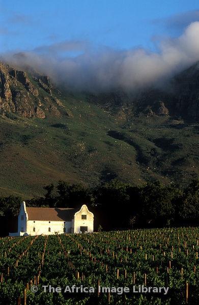 Dornier vineyard, manor house, Cape Dutch architecture, Stellenbosch, South Africa