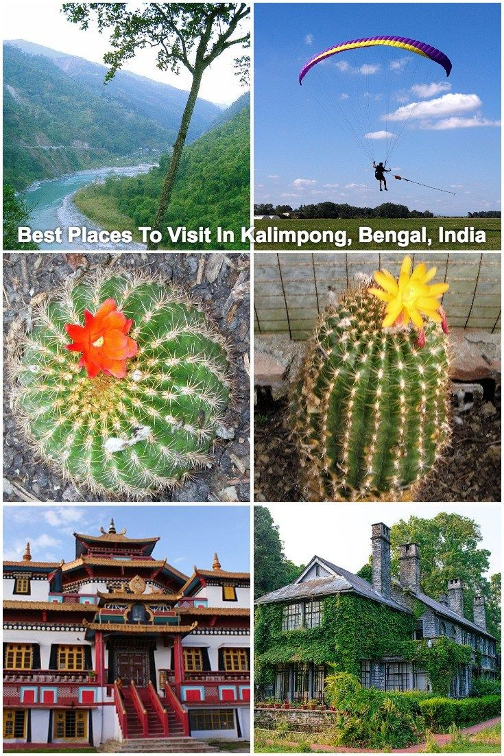 Best Places To Visit In Kalimpong, Bengal, India | Kalimpong sightseeing | Things to do in Kalimpong| Why You Should Visit Kalimpong | Kalimpong Travel Guide | Kalimpong attractions | Paragliding in Kalimpong | #travel #Kalimpong #IncredibleIndia #HillStation #ttot #FamilyTravel #AdventureTravel
