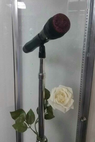 Selena's microphone, lipstick and all. Photo taken at the Selena Museum in Corpus Christi, TX.