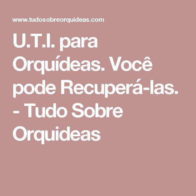 U.T.I. para Orquídeas. Você pode Recuperá-las. - Tudo Sobre Orquideas