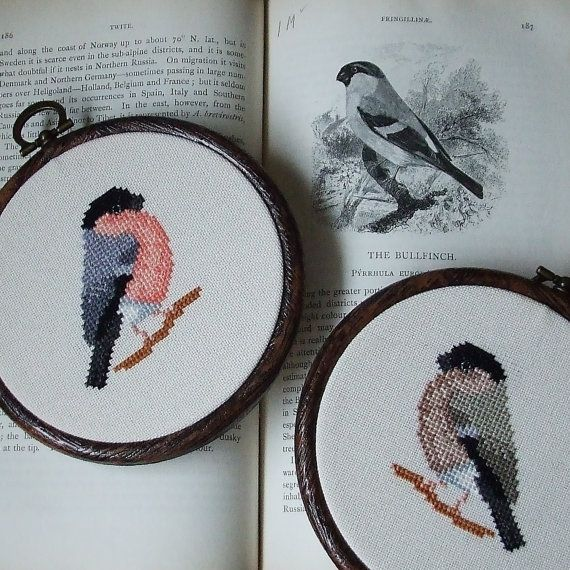 Bullfinch Pair cross stitch pattern. Cross stitch bird. Cross stitch bullfinch. Small cross stitch PDF instant download by The Hawthorn Tree