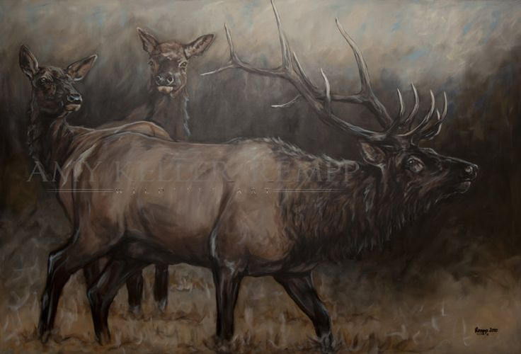 "Amy Keller-Rempp Art. ""Noble Pride"", 48"" by 60"", acrylic on canvas. Original sold, available in giclee prints and fine art cards."