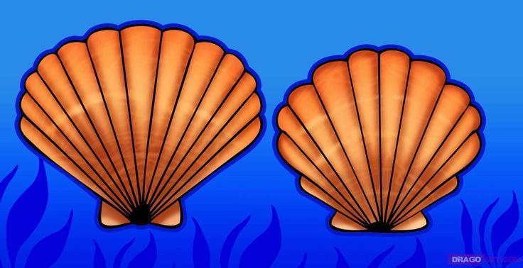 How to Draw a Seashell, Seashells, Step by Step, Stuff, Pop ...