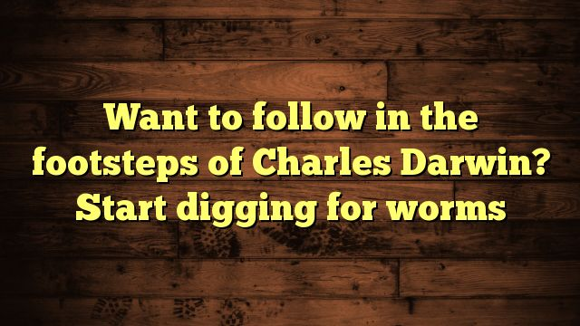 cool Want to follow in the footsteps of Charles Darwin? Start digging for worms