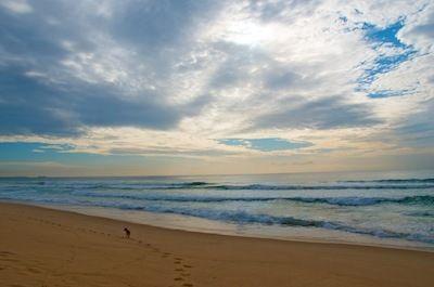 Perkins Beach, Wollongong