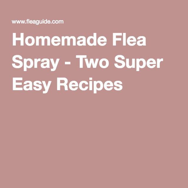 Homemade Flea Spray - Two Super Easy Recipes