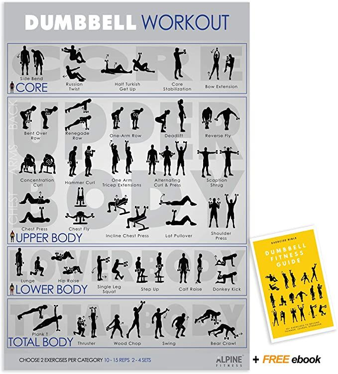 Amazon Com Alpine Choice Dumbbell Workout Exercise Poster Guide 30x20 Laminated Gym Chart Sports Outdoors Dumbbell Workout Fitness Planner Dumbbell