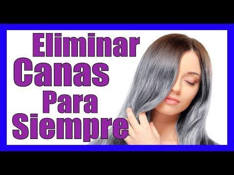 COMO ELIMINAR LAS CANAS PARA SIEMPRE Como Quitar Las Canas Naturalmente Con Remedios Caseros - YouTube