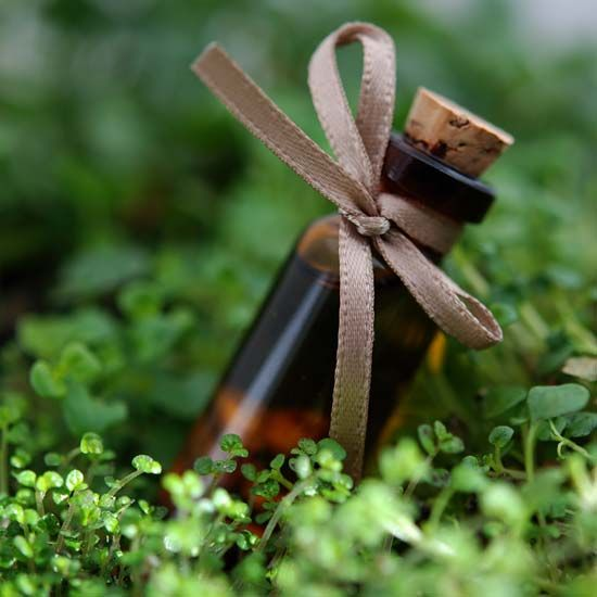 Have a headache? Instead of reaching for that bottle of ibuprofen, try one of these natural remedies for headache relief: lavender, peppermint oil, eucalyptus oil, feverfew or willow bark.