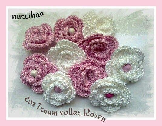 Prachtvolle Rosen