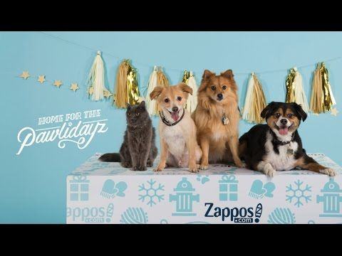 Free Pet Adoptions  From Black Friday through Cyber Monday, Zappos will cover the adoption fee for the cat or dog of your choice when you adopt through Best Friends Animal Society™ or select locations in the No More Homeless Pets Network.