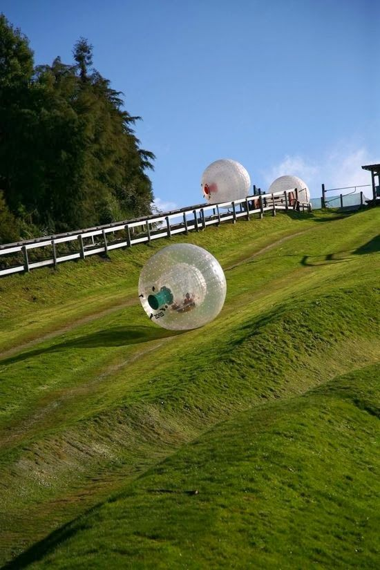Zorbing, in New Zealand. Rolling down a steep hill while inside a balloon filled with air?? Sign me up!!!