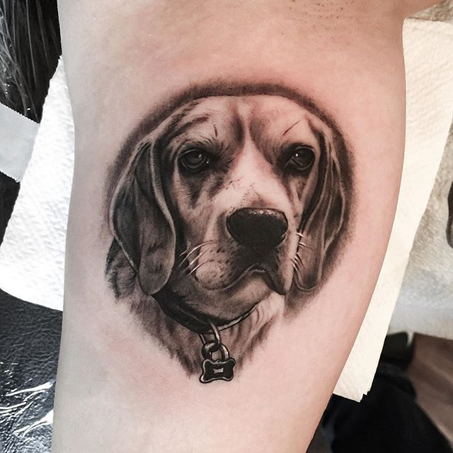 14 Beautiful Beagle Tattoos – staciemayer.com