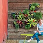 43 cool container gardens