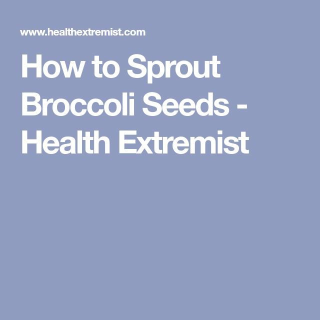 How to Sprout Broccoli Seeds - Health Extremist