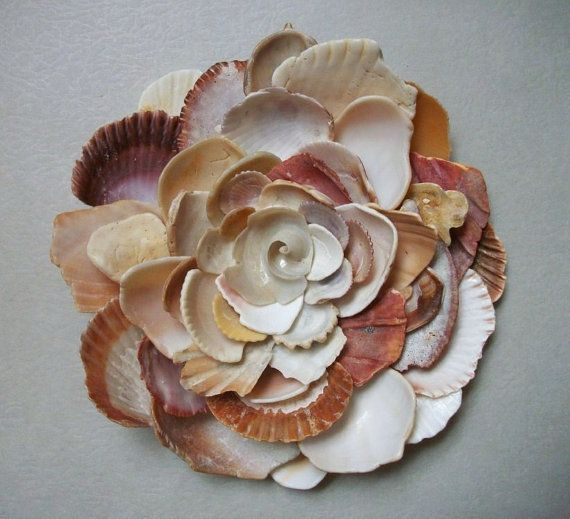seashell wall art, so cool