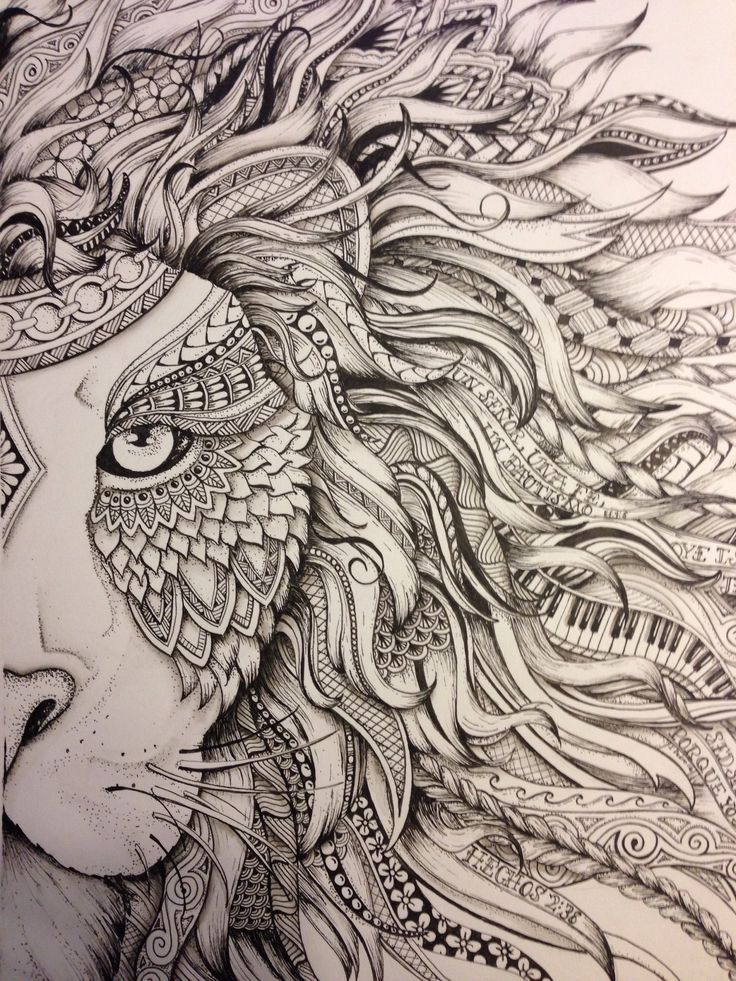 2951 best images about zentangle doodles on pinterest for Lion mandala coloring pages