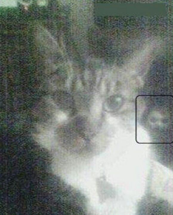 Scary Pictures Real Ghost | Ghost Pictures, looks rather like a doll to me.