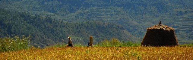 """100% biologische landbouw in Bhutan: """"Het is vreemd dat we in het Westen nog zo middeleeuws met welvaart omgaan"""" - http://www.ninefornews.nl/100-biologische-landbouw-in-bhutan-het-is-vreemd-dat-we-in-het-westen-nog-zo-middeleeuws-met-welvaart-omgaan/"""