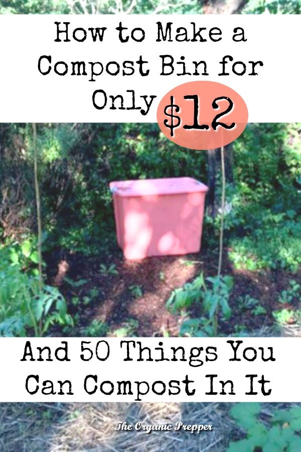 Forgot spending a fortune on a compost bin - here's an easy DIY that only costs $12 - plus, find a list of more than 50 things that you can compost.