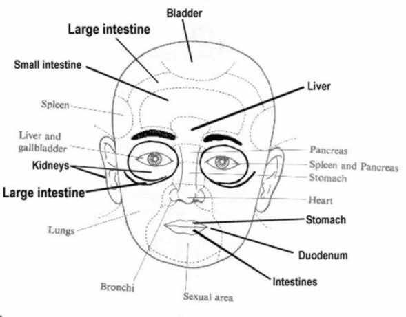 did you know reflexology can also be done on the face