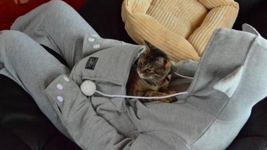 Deze sweater heeft een buidel voor je huisdier •• Diereneigenaars zijn graag dicht bij hun geliefde huisdier. Voor mensen die hun kat of (kleine) hond bij zich in de buurt willen houden, is een nieuw product van de Japanse retailer Unihabitat wellicht wat.  Als een kangoeroe  Met de zogenaamde 'Mewgaroo' blijft je huisdier namelijk altijd in je buurt. Met de sweater kun je een kat of puppy als een kangoeroe bij je houden. De 'buidel' is uitneembaar en gemakkelijk te reinigen. Met de kosten…