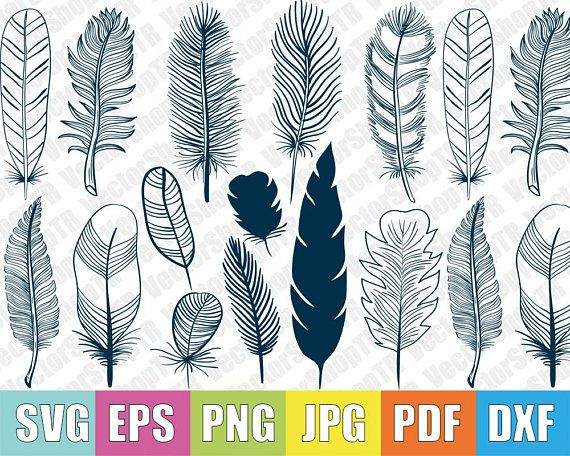 Feather 15pcs Silhouettes Svg Png Pdf Jpg Eps Dxf Etsy Feather Drawing Feather Art Feather