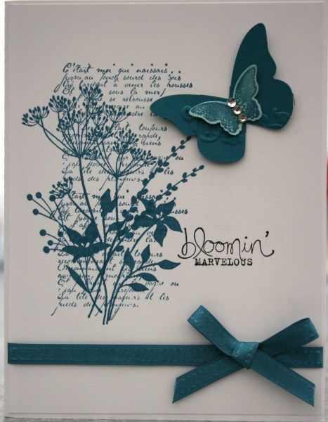 handmade card ... one layer ... two colors ... Bloomin Marvelous stamp ... simple ribbon tied in a bow ... punched & layered butterfly ... pretty card ... Stampin' Up!