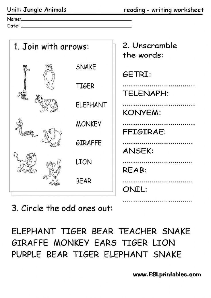 10 besten The animals worksheets - ESL English Bilder auf Pinterest ...
